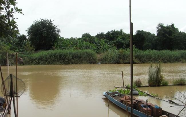 โครงการศึกษาวางแผนแม่บทและสำรวจออกแบบเพื่อก่อสร้างระบบป้องกันตลิ่งพังในแม่น้ำป่าสัก